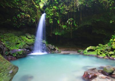 46519_Dominica_Emerald Pool_d814-10